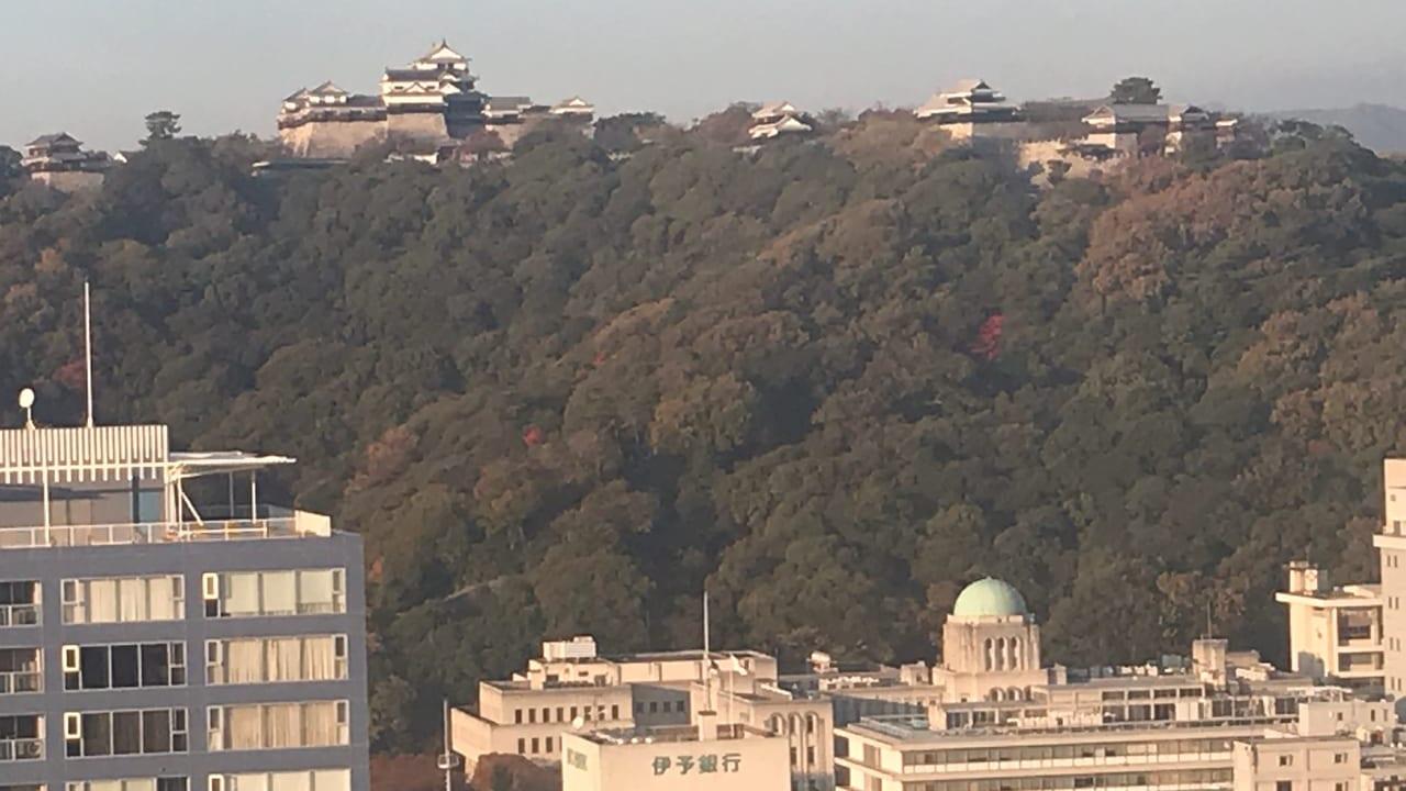 伊予鉄髙島屋の観覧車から見た松山城