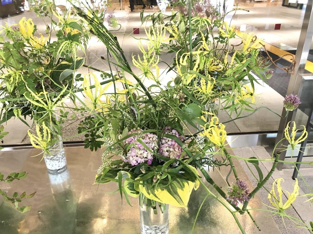 2021年4月「こうちのohana満開プロジェクト」開始。高知市役所での花の展示やInstagramでのフォトコンテンストも開催。