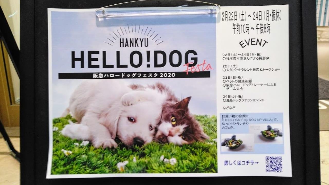 阪急ハロードッグフェスタ2020ソリオ宝塚店