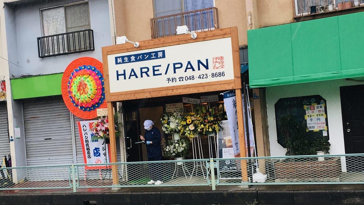 ハレパン41